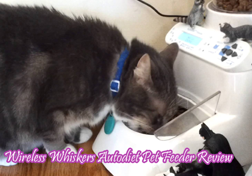 Wireless Whiskers Autodiet Pet Feeder Review