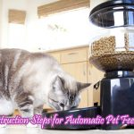 Instruction Steps for Automatic Pet Feeder