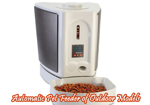 Automatic Pet Feeder of Outdoor Models