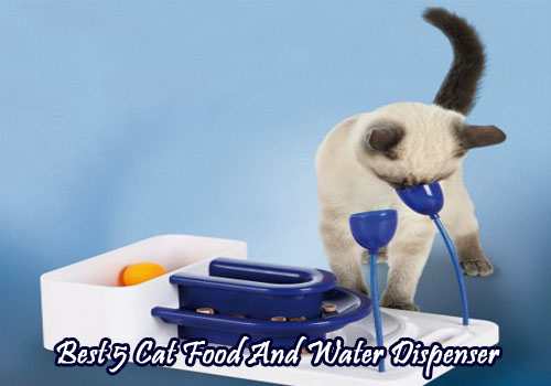 Best 5 Cat Food And Water Dispenser