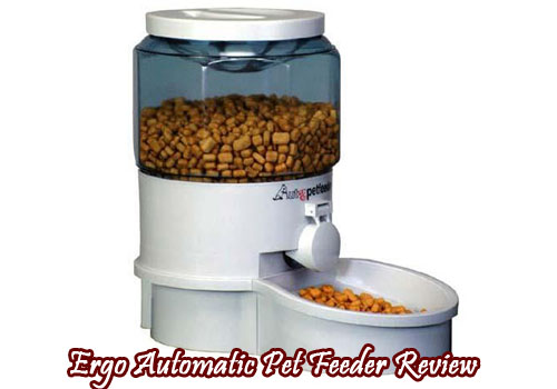 Ergo Automatic Pet Feeder Review