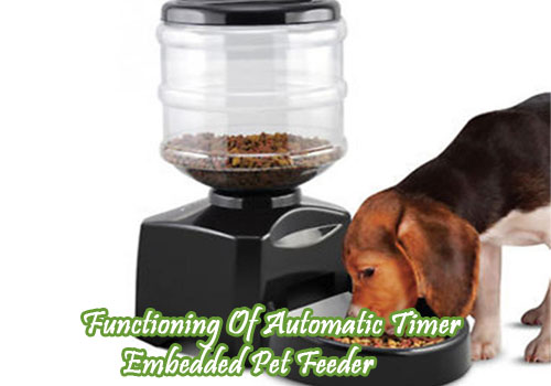 Automatic Pet Feeder With Timer