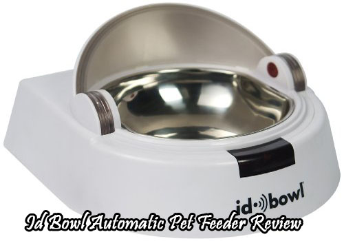 Id Bowl Automatic Pet Feeder Review
