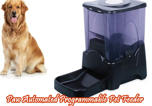 Paw Automatic Pet Feeder