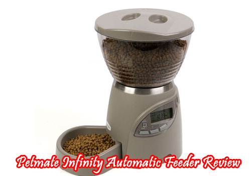 Petmate Infinity Automatic Feeder Review