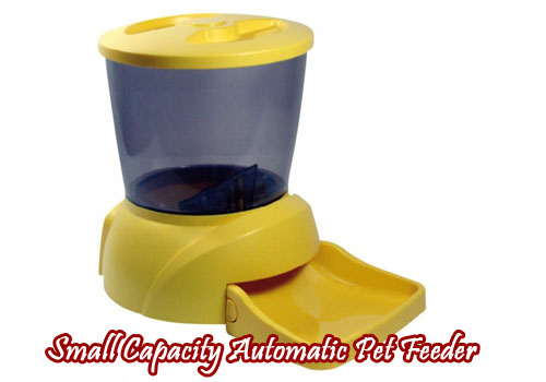 Small Automatic Pet Feeder