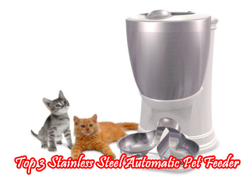 Top 3 Stainless Steel Automatic Pet Feeder