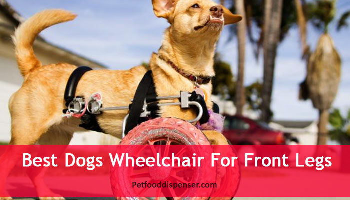 dog-front-leg-wheel-chair