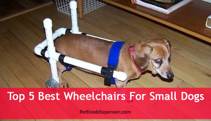 Wheelchairs For Small Dogs Reviews